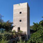 La Torre fra tamerice e pitosforo
